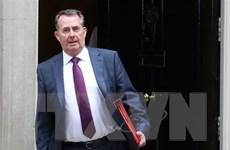 Bộ trưởng Thương mại Anh: Vẫn có nguy cơ không đạt thỏa thuận với EU