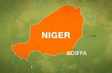 Nhiều nhân viên công ty khai khoáng của Pháp bị bắn chết ở Niger