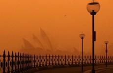 Thành phố Sydney của Australia đang chìm ngập trong khói bụi
