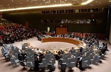 Đức đề xuất Pháp chuyển ghế thường trực tại HĐBA LHQ cho châu Âu