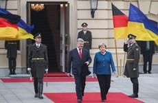 Ukraine kêu gọi Đức và các nước phương Tây áp trừng phạt bổ sung Nga