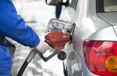 Giá dầu thị trường thế giới giảm do lượng dầu dự trữ của Mỹ tăng
