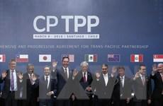 Hiệp định CPTPP và USMCA: Những hướng liên kết thương mại trái chiều