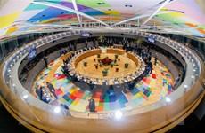 EU đã xác định được những bước đi cụ thể để cải tổ nội khối