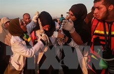 Palestine kêu gọi viện trợ nhân đạo 350 triệu USD cho năm tới