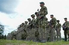 Colombia tiêu diệt một thủ lĩnh và phụ tá nhóm ly khai của FARC