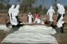 Phát hiện mộ tập thể các nạn nhân bị IS hành quyết tại Libya