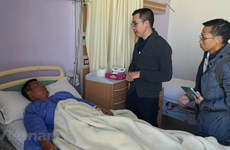 Xác định danh tính du khách Việt thiệt mạng sau vụ đánh bom tại Ai Cập