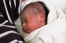 Gần 400.000 em bé được sinh ra vào ngày đầu tiên của năm 2019