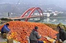 Trung Quốc đang đối mặt với thời kỳ lực lượng lao động giảm