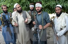 Taliban đàm phán với Mỹ, từ chối gặp đại diện Chính phủ Afghanistan
