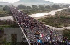 Brazil rút khỏi Hiệp ước toàn cầu về di cư của Liên hợp quốc