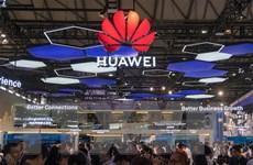 Ba Lan có thể cân nhắc việc hạn chế sử dụng thiết bị của Huawei