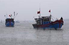 Bà Rịa-Vũng Tàu: Cấp cứu 4 thuyền viên bị ngạt khí hầm cá