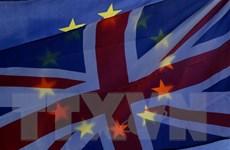 Liên minh châu Âu sẵn sàng lùi thời hạn Brexit sau 29/3