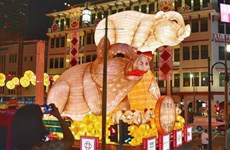 Rực rỡ lễ hội mừng Năm mới đón Tết nguyên đán Kỷ Hợi tại Singapore