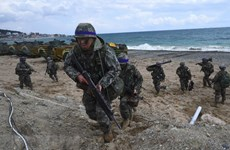 Mỹ-Hàn giảm quy mô tập trận thúc đẩy đàm phán phi hạt nhân Triều Tiên