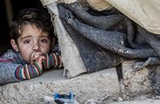 Bạo lực, thời tiết khắc nghiệt khiến nhiều trẻ em Syria thiệt mạng