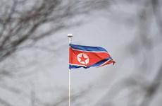 Phái viên hạt nhân Mỹ dự kiến tới Hàn Quốc để thảo luận với Triều Tiên