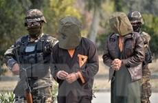 An ninh Afghanistan tiêu diệt một thủ lĩnh chủ chốt của Taliban
