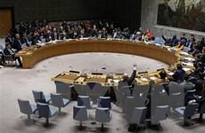 Pháp, Đức cùng đảm nhiệm vai trò chủ tịch luân phiên Hội đồng Bảo an