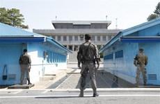 Hàn Quốc bổ nhiệm Thư ký Tổng thống chuyên trách hợp tác liên Triều