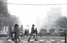 Bụi mịn tấn công Hàn Quốc, nhiều sản phẩm bất ngờ 'đắt khách'