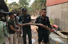 Campuchia kêu gọi Thái Lan hỗ trợ nước sạch cứu hạn cho tỉnh Koh Kong
