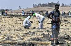Vụ tai nạn máy bay Ethiopia: Bắt đầu tiến trình điều tra nguyên nhân