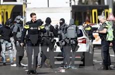 Thủ tướng Hà Lan: Ưu tiên hàng đầu là truy lùng nghi can vụ xả súng