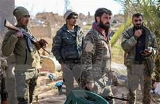 Bộ trưởng Quốc phòng Syria: SDF phải đối mặt với 2 lựa chọn