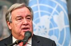 Liên hợp quốc kiên quyết nói 'không' với nạn lạm dụng tình dục