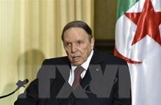 Tổng thống Algeria Abdelaziz Bouteflika tuyên bố không từ chức