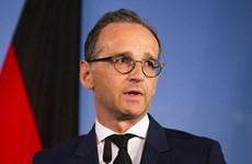 Đức cảnh báo trừng phạt các thành viên EU không tuân nguyên tắc