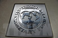 IMF không công nhận 'tổng thống tự phong' của Venezuela