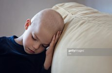Cơ hội duy trì khả năng sinh sản cho các bé trai mắc ung thư