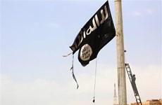 Anh, Pháp lên tiếng sau khi SDF tuyên bố đánh bại IS tại Syria