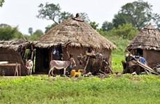 Thợ săn thuộc tộc người Dogon tại Mali sát hại hơn 100 người