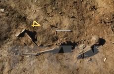 Hàn Quốc sẽ độc lập tiến hành khai quật hài cốt binh sỹ trong DMZ