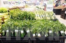 Các siêu thị sử dụng lá chuối đóng gói thực phẩm, nông sản