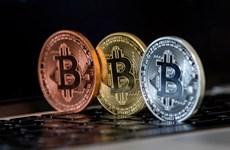 Đồng tiền ảo Bitcoin tăng giá mạnh, chạm mốc 5.000 USD