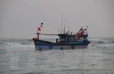 Lai dắt vào bờ an toàn tàu cá và 7 thuyền viên gặp nạn trên biển