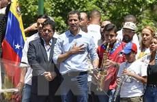 OAS công nhận phái viên phe đối lập Venezuela làm đại diện thường trực