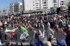 Algeria: Biểu tình hòa bình chuyển hướng dần sang bạo lực