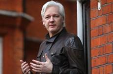 Cha của ông Assange kêu gọi Thủ tướng Australia can thiệp