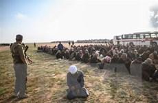 Iraq bắt đầu tiến hành các thủ tục xét xử 900 nghi phạm IS