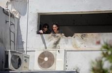 Palestine hối thúc cộng đồng quốc tế can thiệp vào xung đột tại Gaza