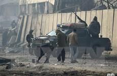 Hơn 40 người thương vong trong vụ đánh bom liều chết ở Afghanistan