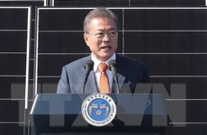 Tổng thống Hàn Quốc: Seoul đang tìm cách gửi gạo tới Triều Tiên