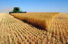 Nga sẽ dành hơn 46 triệu USD hỗ trợ phát triển ngành nông nghiệp